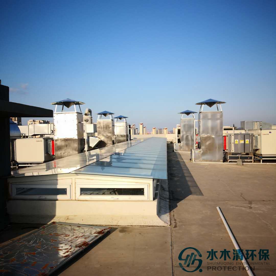 动物房废气处理设备